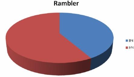 Оптимизация сайта для поисковой машины Рамблер