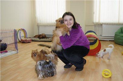 300424f6144f Идеи для малого бизнеса: открываем гостиницу для домашних животных