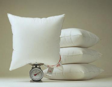 54543307_2 Идея для малого бизнеса: услуги по чистке подушек