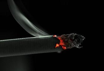 575861_tvoj-hozyain Как заработать на борьбе с курением