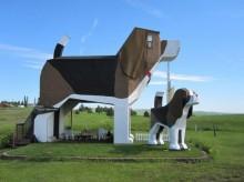 3875442_700_524_fixedwidth-220x164 Необычные идеи для своего бизнеса: Отель для животных