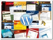 eaa88bc03d71c99335727f29d8b926eb-220x168 Как выбрать шаблон для блога на WordPress