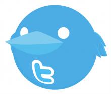 g.jpg-220x186 Твиттер эксперимент на 1000 руб.: Результат и Рекомендации