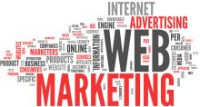 Professional-Website-Design-220x118 Реклама в газете: Три в одном для вашего бизнеса